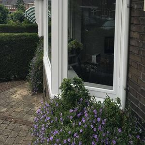 Finishing 4 Amsterdam image 3